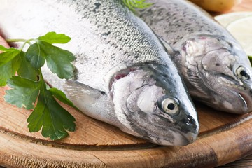 Eat fish for weight loss what are the 6 essential for Healthiest fish to eat for weight loss