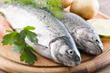 what is a fish diet