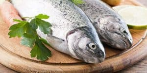 best fish to eat for weight loss