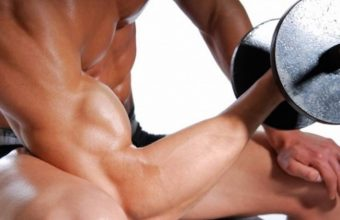 Top 10 Foods for Building Muscle