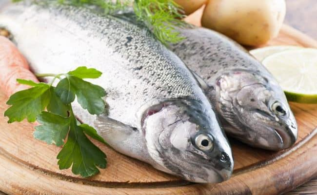 what is a fish diet and is it bad for you