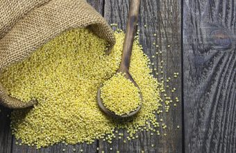 Is Millet (gluten free grain) Good for Weight Loss?
