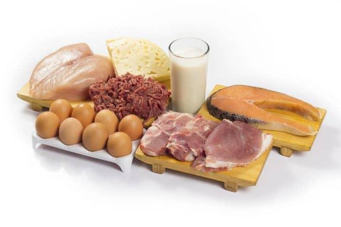 best diet for body type