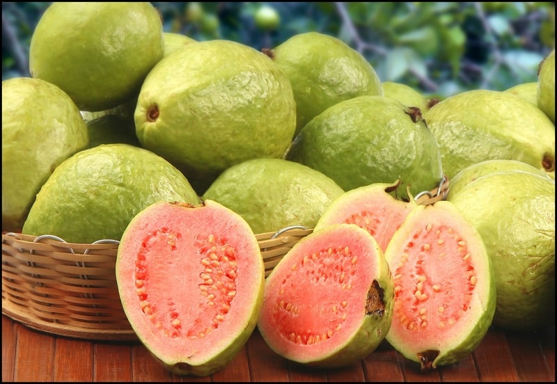 Amazing benefits but also side effects from eating guavas ccuart Image collections