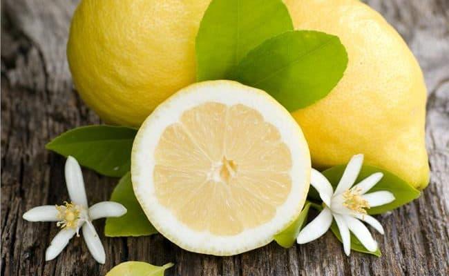 best citrus fruits
