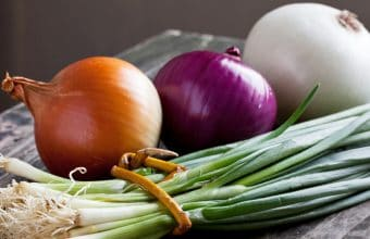 6 Healthy Prebiotic Foods You Can Safely Include in Your Daily Diet