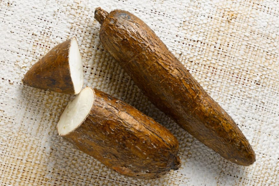 cassava health dangers