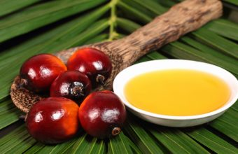 Is Palm Oil Good Or Bad For Your Health?