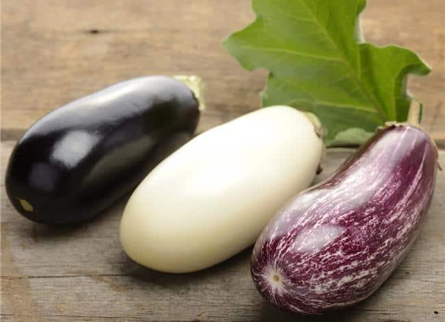 coloured eggplants
