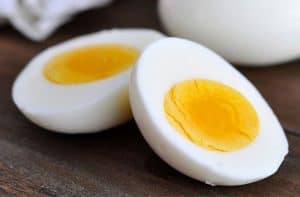 egg protein source