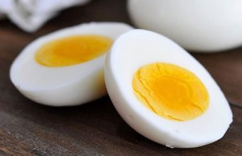 Which Part of the Egg is Rich in Protein: Yolk or White?