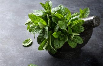 Are There Any Health Benefits From Eating Mint Leaves?